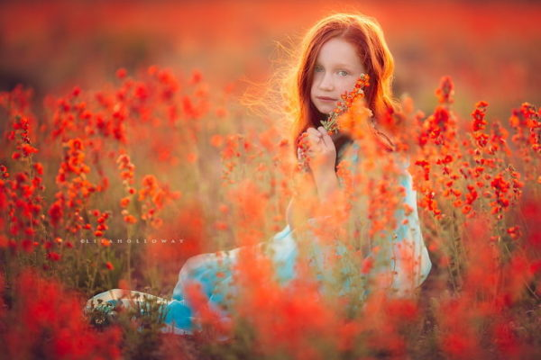 Fiery Evening By Lisa Holloway
